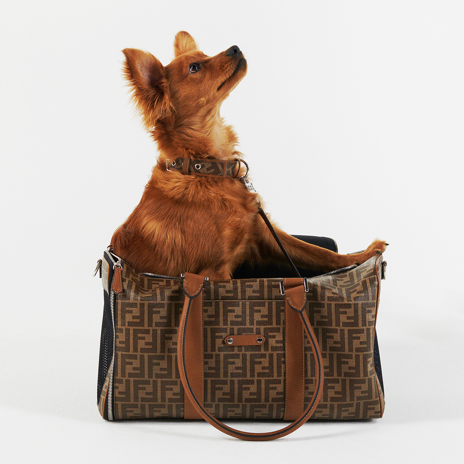 FENDI PET CARRIER - Brown fabric dog carrier - view 5 detail