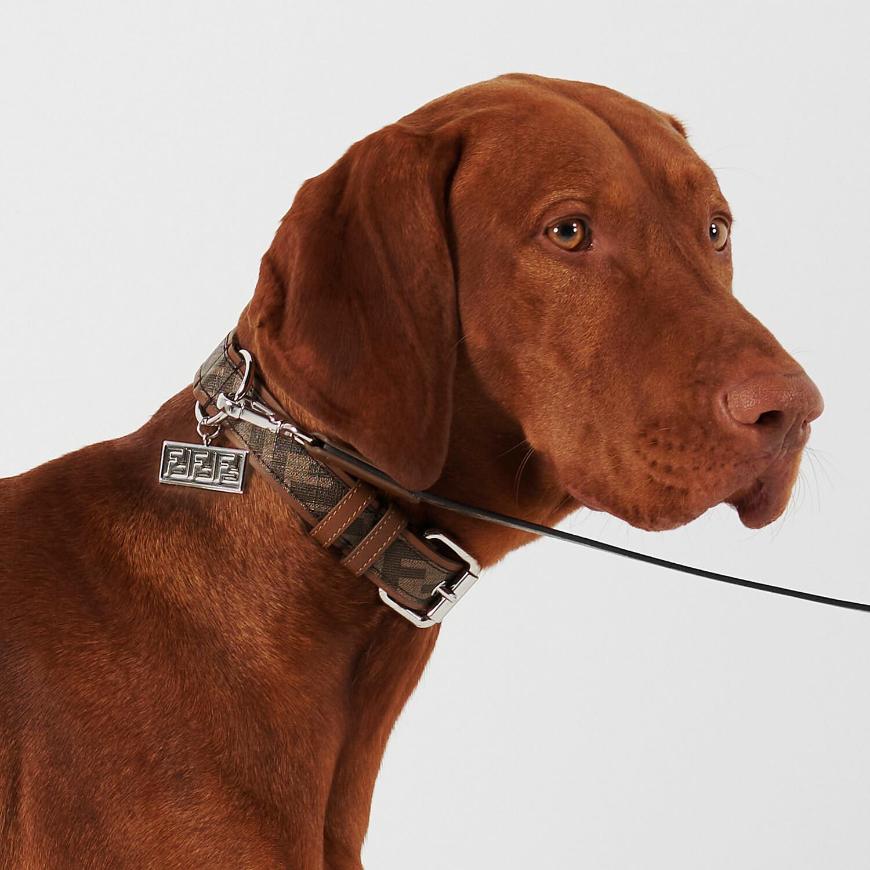 FENDI DOG COLLAR - Brown fabric collar - view 3 detail