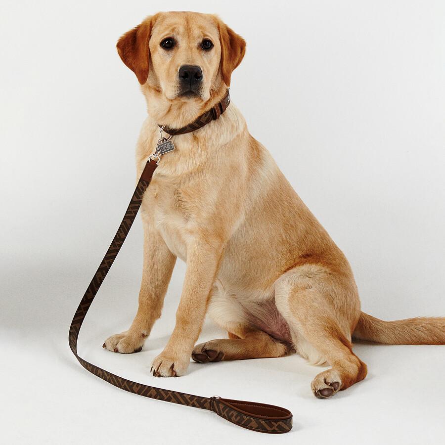 FENDI DOG LEASH - Brown fabric lead - view 3 detail