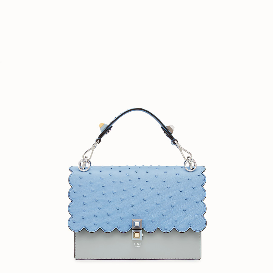 FENDI KAN I - Multicolor leather and ostrich bag - view 1 detail